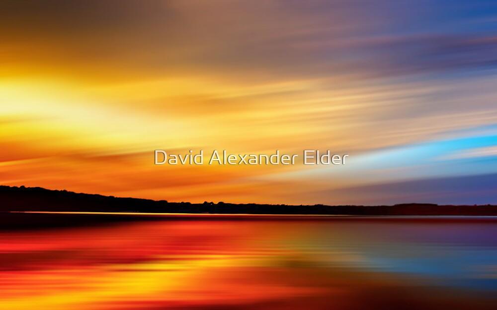 Forest Twilight by David Alexander Elder