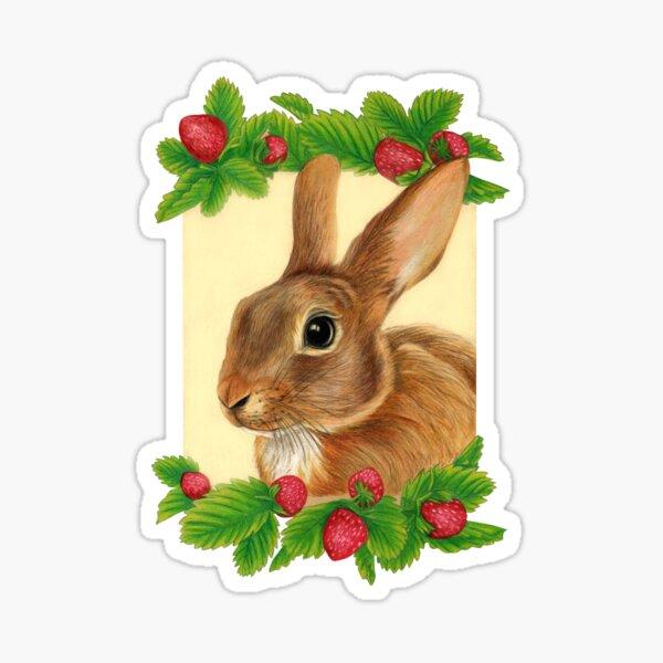 Rabbit with Strawberries by Artist Sherrie Spencer Sticker