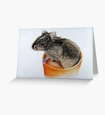 Dwarf Russian Hamster Greeting Card