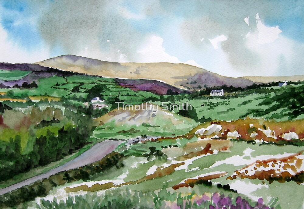 """Mountains & Moors"" - Ballymakeera, County Cork, Ireland by Timothy Smith"