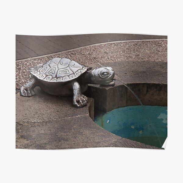Turtle spout Real del Monte Poster
