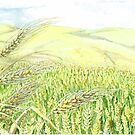 Wheat Fields Ready for Harvest by clotheslineart