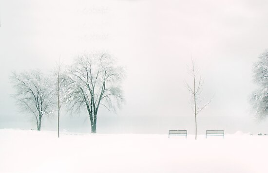 Whiter Shade of Pale by John Poon