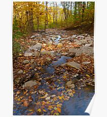 Fall in Cliff Cave Park Poster