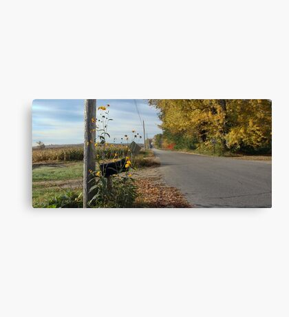 Autumn - Country Road Canvas Print