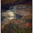 Quinn Run Falls (alternate) by Aaron Campbell