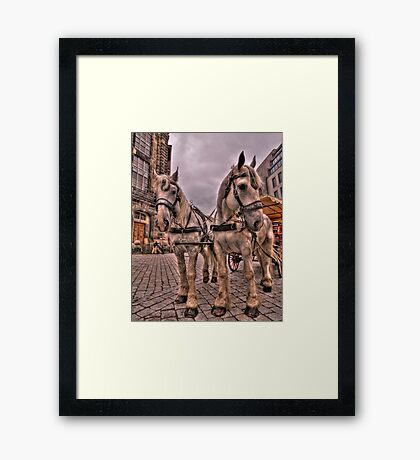 Old Town Dresden Germany Framed Print