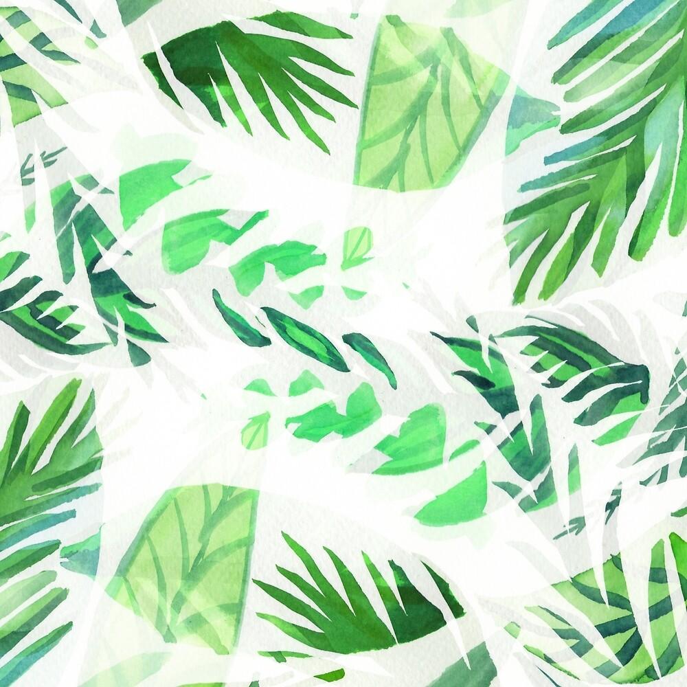 Tropical leaf by vasarenar