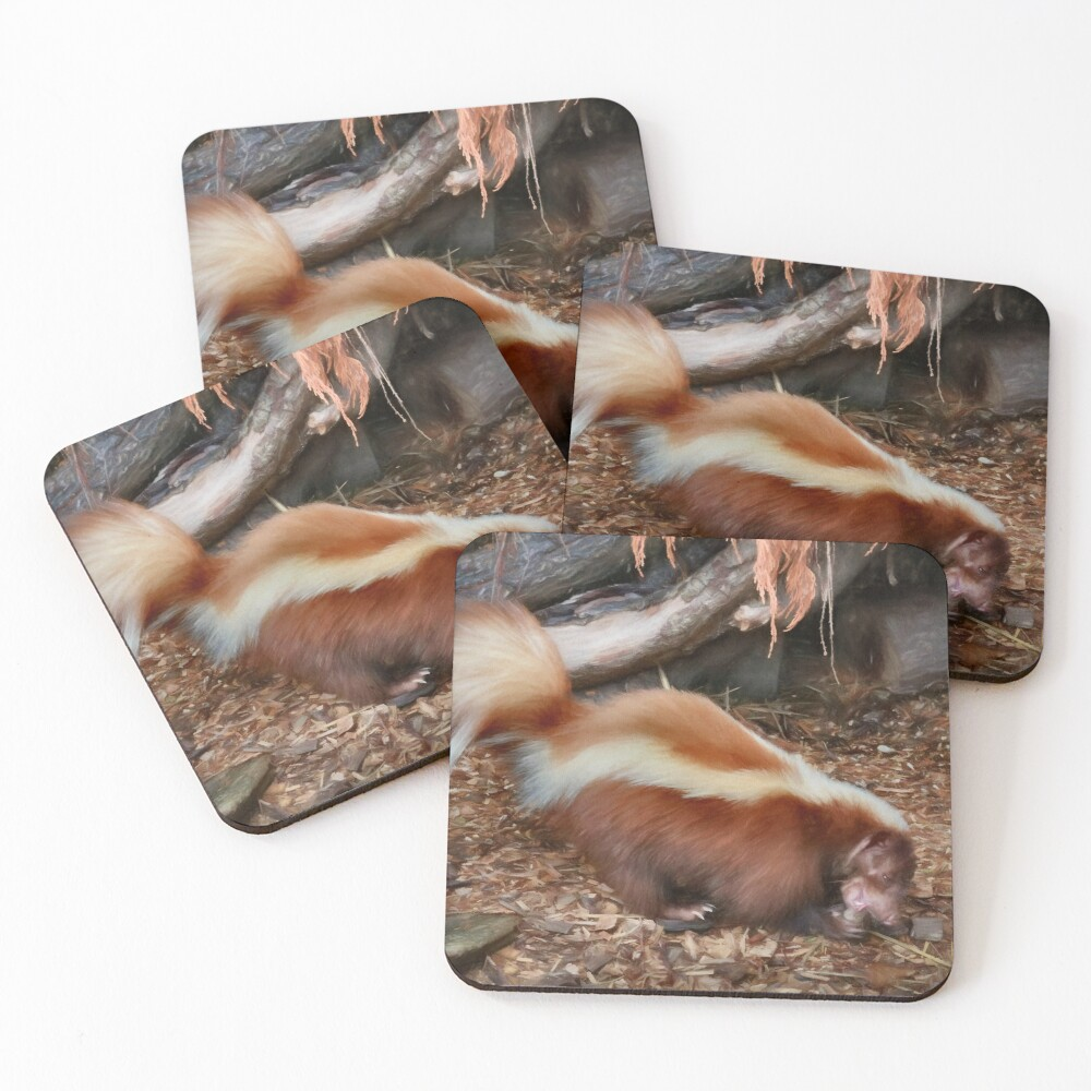 Skunk Coasters Set Of 4 By Missmoneypenny Redbubble