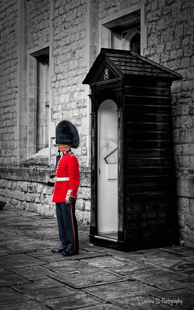 On Guard by Mark  Swindells
