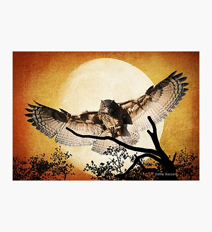 Eagle Owl And The Moon Photographic Print