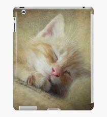 Soft Kitty, Warm Kitty, Little Ball of Fur iPad Case/Skin