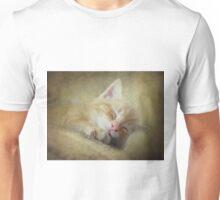 Soft Kitty, Warm Kitty, Little Ball of Fur Unisex T-Shirt