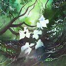 White Begonia by Anil Nene