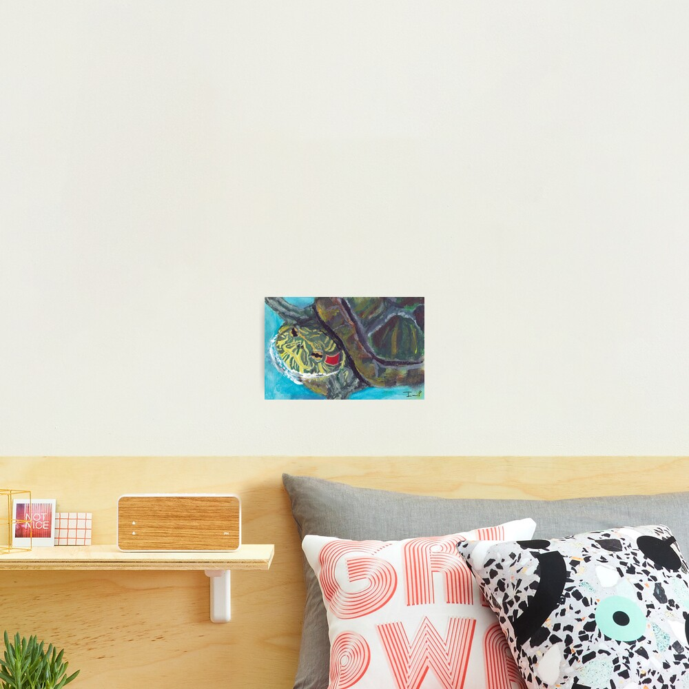 Red Eared Slider Photographic Print