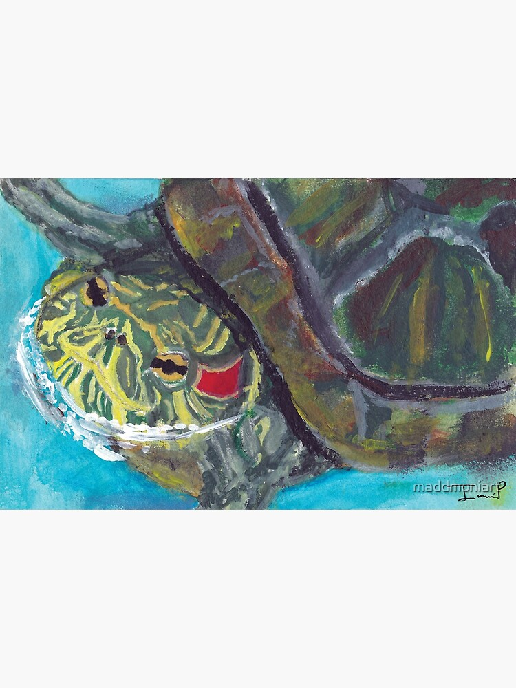 Red Eared Slider by maddmoniart