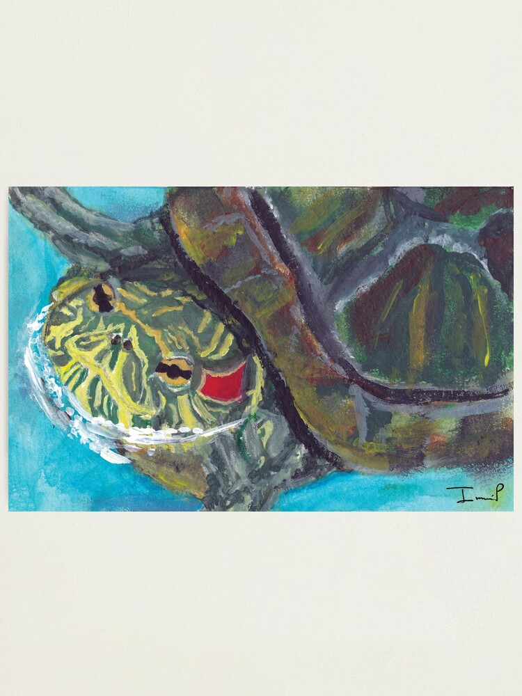 Alternate view of Red Eared Slider Photographic Print