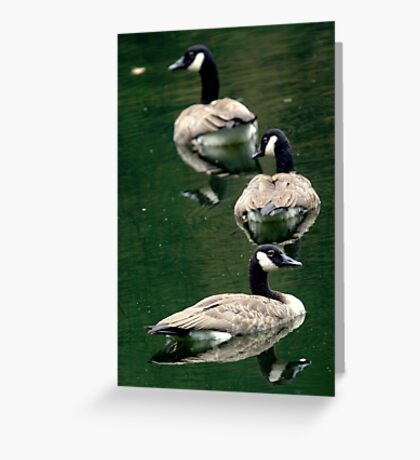 This Way...No This Way ! Greeting Card