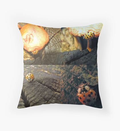 The Ladybug that Wandered Throw Pillow