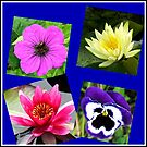 Essex Flowers Collage von BlueMoonRose