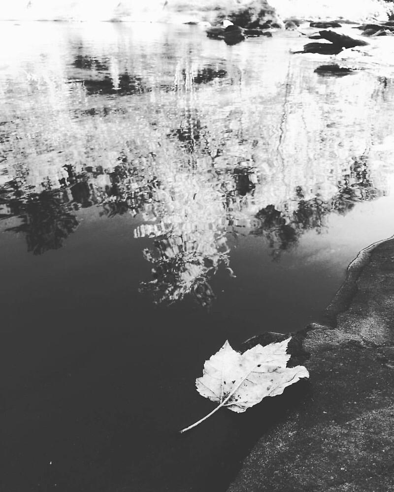 Untitled by HLGlenn