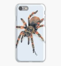 Mexican Red Knee Tarantula  iPhone Case/Skin