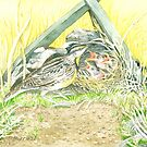 Meadowlark Nest & Three Hungry Babies by clotheslineart