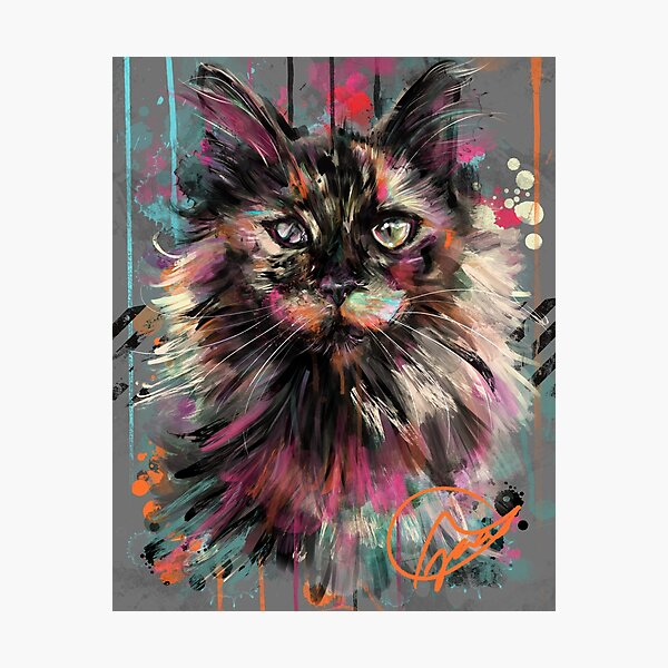 Project Caturday - Daisy Gurl Photographic Print