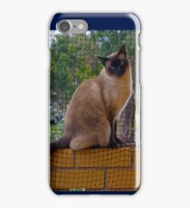 Zafira on the wall  - iPhone case  iPhone Case/Skin
