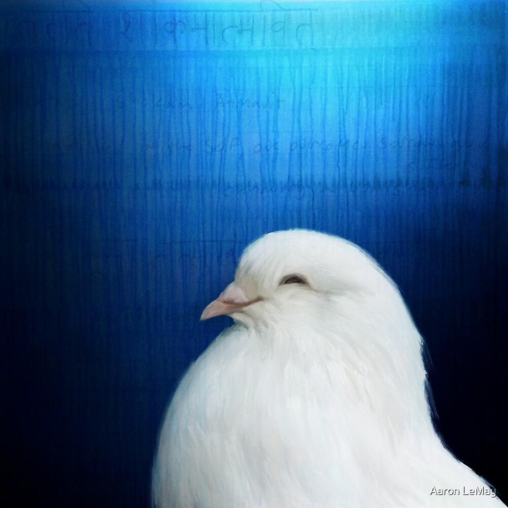 Bird Notes: Dove by Aaron LeMay