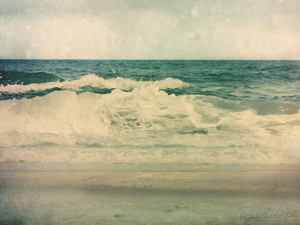 Salt Water Cures by Virginia Sanderson
