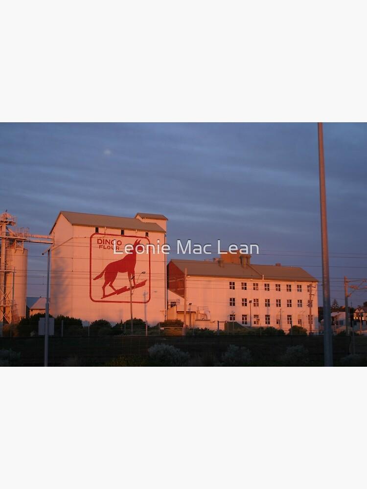 Dingo Flour Mill Fremantle Western Australia by yallmia