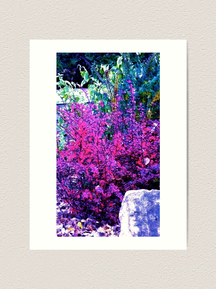 Alternate view of Man in the Stone! Art Print