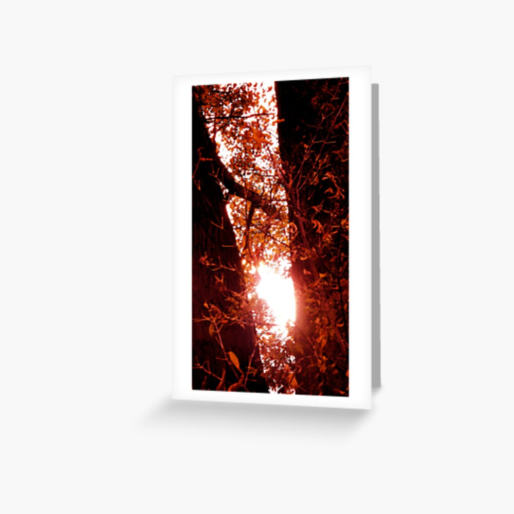 Radiant Rays of Hope Greeting Card