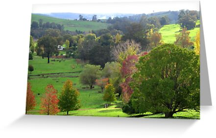 Autumn from pear tree lookout a thamo greeting cards by golden autumn from pear tree lookout a thamo by golden valley tree park m4hsunfo