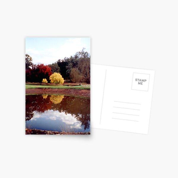 Claret & Golden Ash  - H Hulme Postcard