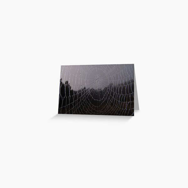 Morning Mist - Candy Matthews Greeting Card