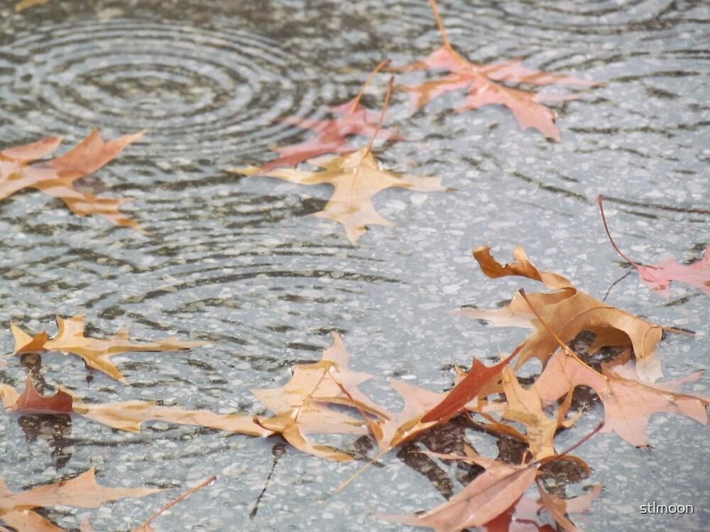 Autumn rain on the pavement by stlmoon