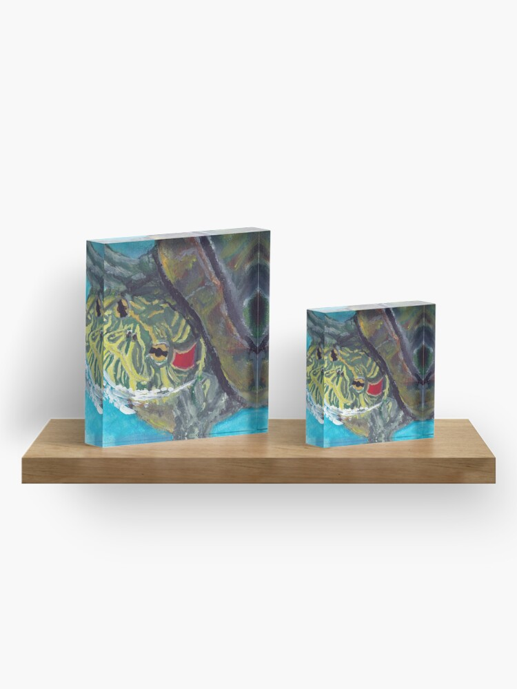 Alternate view of Red Eared Slider Acrylic Block