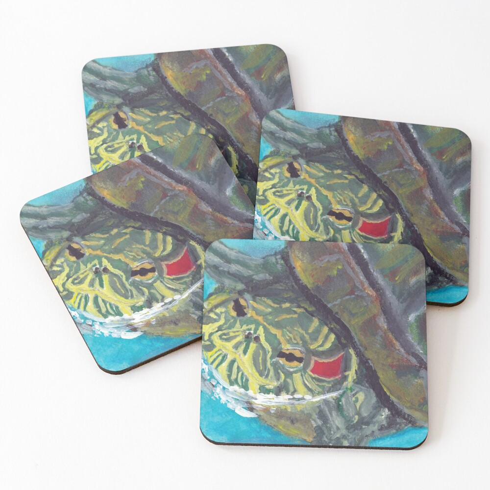Red Eared Slider Coasters (Set of 4)