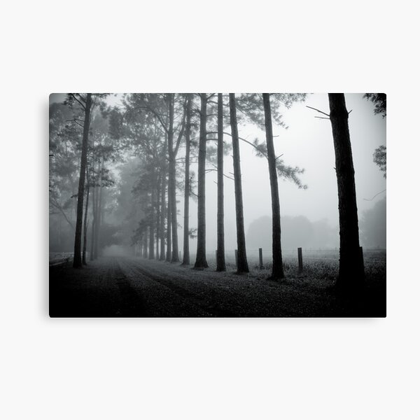 Faded Memories Of The Old Place Canvas Print