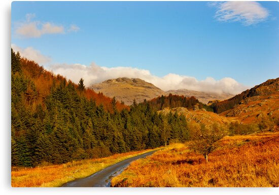Duddon Valley Autumn by Trevor Kersley