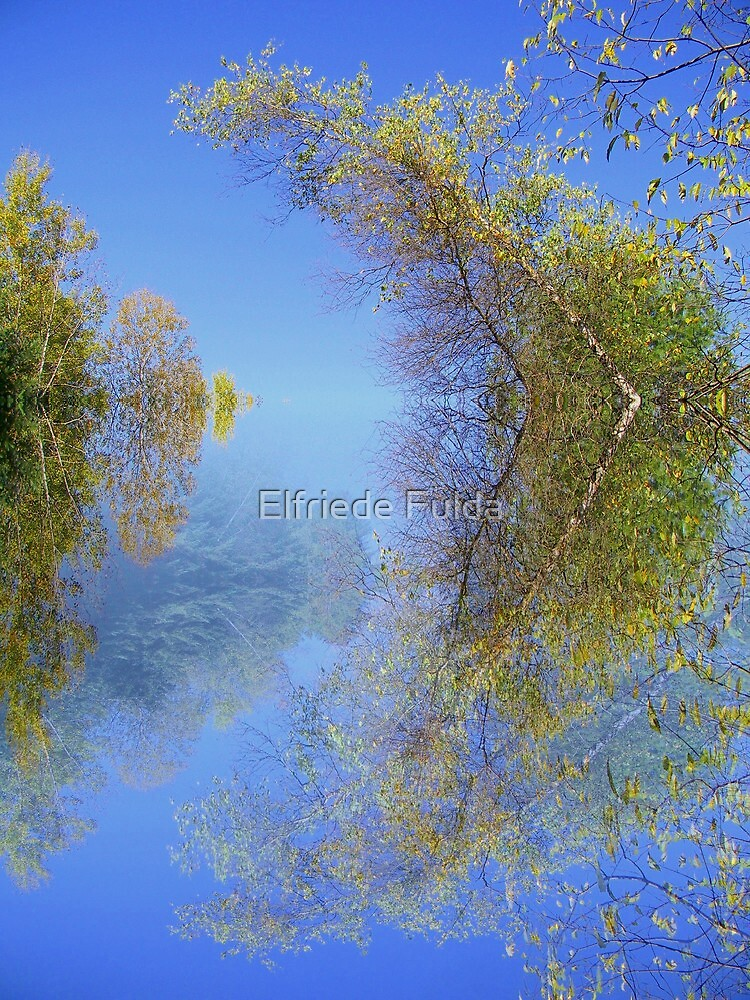 The Bow ! by Elfriede Fulda