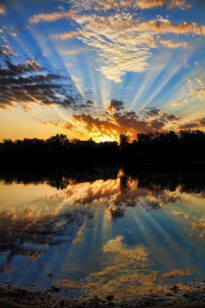 Perfectly Reflected by Carolyn  Fletcher