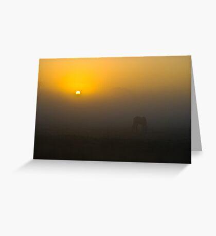 Misty Dawn 3.0 Greeting Card