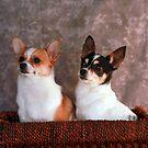 Stella and Eddie by Renee Blake