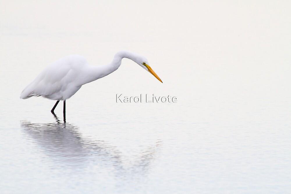 Stalking Egret by Karol Livote