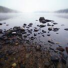 Connecticut Rocks by Karol Livote