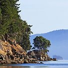 Campbell Bay in October by TerrillWelch
