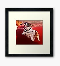It was a joke. Where is your sense of humor? Framed Print